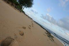 fotsteg kauai Arkivbild