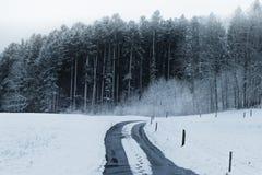 Fotsteg på en snö täckte gatan på bygd framme av skogen royaltyfria foton