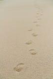 Fotsteg på en strand Arkivbild