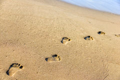 Fotsteg på sanden Arkivbilder