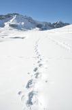 Fotsteg på snön fotografering för bildbyråer