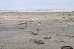 Fotsteg på stranden Arkivbild