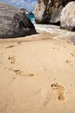 Fotsteg på stranden av den Tortola ön Fotografering för Bildbyråer