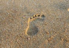 Fotsteg på strandsand Royaltyfria Bilder