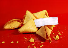 Fotune cookies. Blank fortune on fortune cookies Royalty Free Stock Image