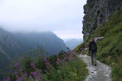 Fotvandra över Tatras berg Arkivbilder