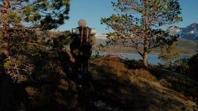 Fotvandra att gå för man som är stigande Manligt turist- trekking gå utomhus på en slinga i sommar H?rlig sommarsolnedg?ng fotvan stock video