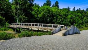 Fotvandra att gå och undersökning av den härliga gröna och naturliga Tolmie delstatsparken i Nisqually Washington On A den ljusa  fotografering för bildbyråer