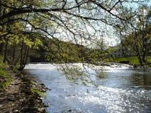 Fotvandra banan på den Zschopau floden fotografering för bildbyråer