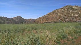 fotvandra berg Arkivbilder