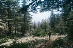 fotvandra berg En flicka står mot bakgrunden av höga berg vila för flicka Arkivbilder