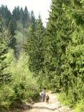 fotvandra berg för familj Royaltyfri Fotografi