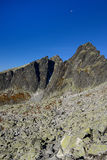 fotvandra bergtatra Arkivbilder