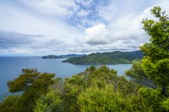 Fotvandra Coromandel den kust- gångbanan, Nya Zeeland 10 Arkivbild