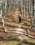Fotvandra den Appalachian trailen Royaltyfri Foto