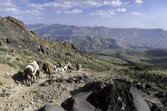 Fotvandra den Damavand vulkan i Iran Royaltyfri Fotografi