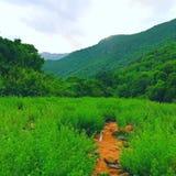 Fotvandra för berg Arkivfoto