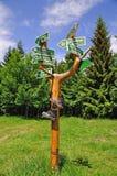 fotvandra för skoghandbok som är thuringian Arkivfoto