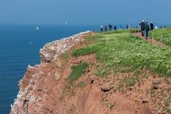 Fotvandra folk längs klipporna av Helgoland som beundrar nordliga gummin Arkivbild
