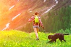 Fotvandra i bergen med hans hund Royaltyfria Foton