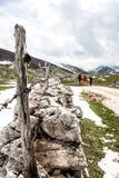 Fotvandra i Bosnien Arkivfoton