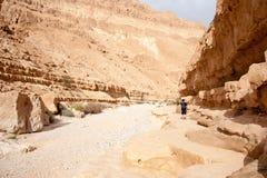 Fotvandra i en Judean öken av Israel Royaltyfri Fotografi