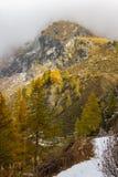 Fotvandra i högt berg Ayas dal, Aosta Italien royaltyfri foto