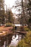 Fotvandra i skogarna av Yosemite på en nedgångdag arkivfoton