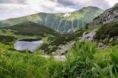 Fotvandra i (västra-Tatras) Rohace, Slovakien Fotografering för Bildbyråer