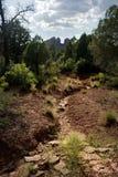 fotvandra kullar för lera Arkivbild