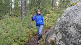 Fotvandra kvinnan som Trekking i Forest Front View av den unga flickafotvandraren för blandat lopp som går på Trek med ryggsäcken stock video