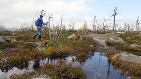 Fotvandra kvinnan som Trekking på en bana i skog nära det härliga dammet i Karelia, Ryssland Fantastisk ryss Autumn Nature arkivfilmer