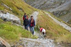 Fotvandra med den St Bernard hunden, stor St Bernard Pass i Schweiz Royaltyfri Fotografi