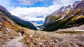 Fotvandra ner till Lake Louise i Banff Fotografering för Bildbyråer