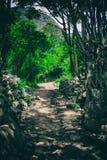 Fotvandra på den forntida Inca Trail stenlade banan till Machu Picchu peru Inga personer arkivfoton