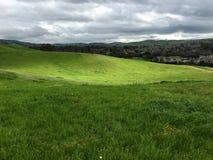 Fotvandra på den Montgomery kullen parkera, San Jose, Kalifornien fotografering för bildbyråer