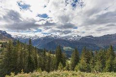 Fotvandra på monteringen Brunni på Engelberg i de schweiziska fjällängarna royaltyfri bild