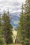 Fotvandra på monteringen Brunni på Engelberg i de schweiziska fjällängarna arkivfoton