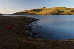 Fotvandra på Shetland öar Arkivbild
