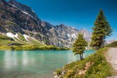 Fotvandra runt om Truebsee sjön i schweiziska fjällängar, Engelberg Royaltyfria Foton