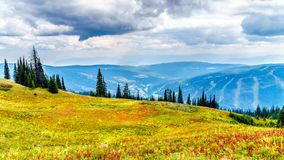 Fotvandra skuggar på Tod Mountain nära byn av solmaxima av British Columbia, Kanada royaltyfri fotografi