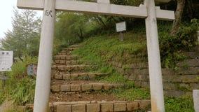 Fotvandra slinga i Japan arkivfilmer