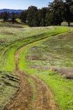 Fotvandra slinga på rullning av gröna kullar, Arastradero sylt, Palo Alto, San Francisco Bay område, Kalifornien arkivfoton