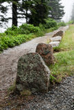 Fotvandra slingan i Acadia NP Arkivfoton