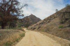 Fotvandra slingan i Kalifornien kullar Arkivfoton