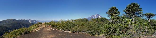 Fotvandra slingan på Conguillio N P & x28; Chile& x29; - panorama Royaltyfri Bild
