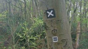 Fotvandra slingatecknet på ett träd arkivfilmer