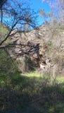 Fotvandra svarta Diamond Mines fotografering för bildbyråer
