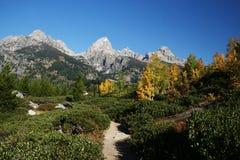 fotvandra trail Fotografering för Bildbyråer