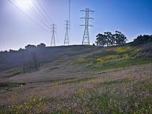 fotvandra trail Arkivbild